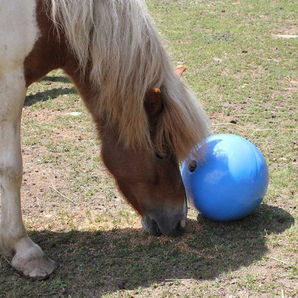 ROTO žoga za konjske prigrizke